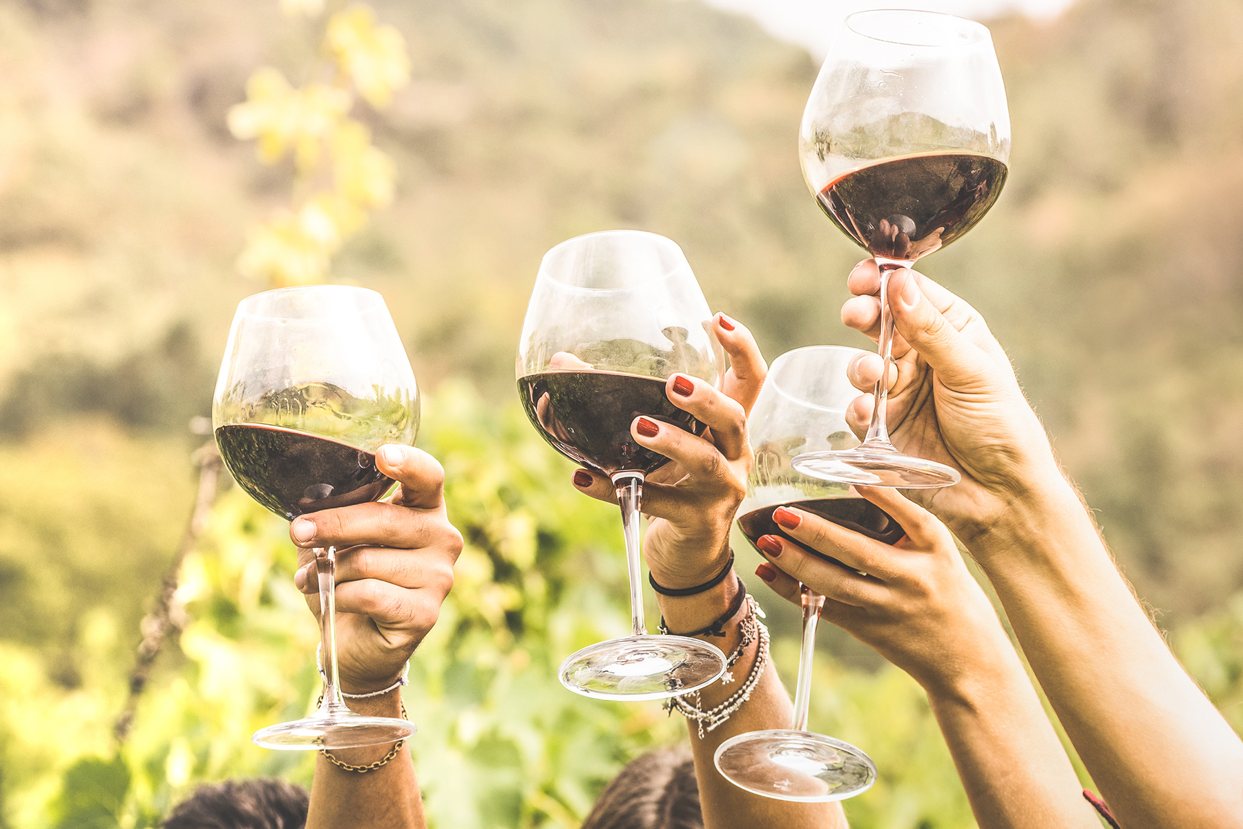Clinking wine glasses in southern Europe