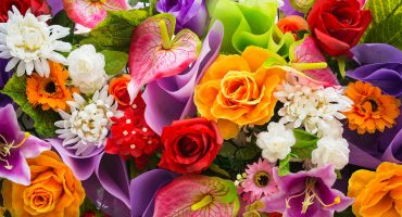 Meaning of flowers