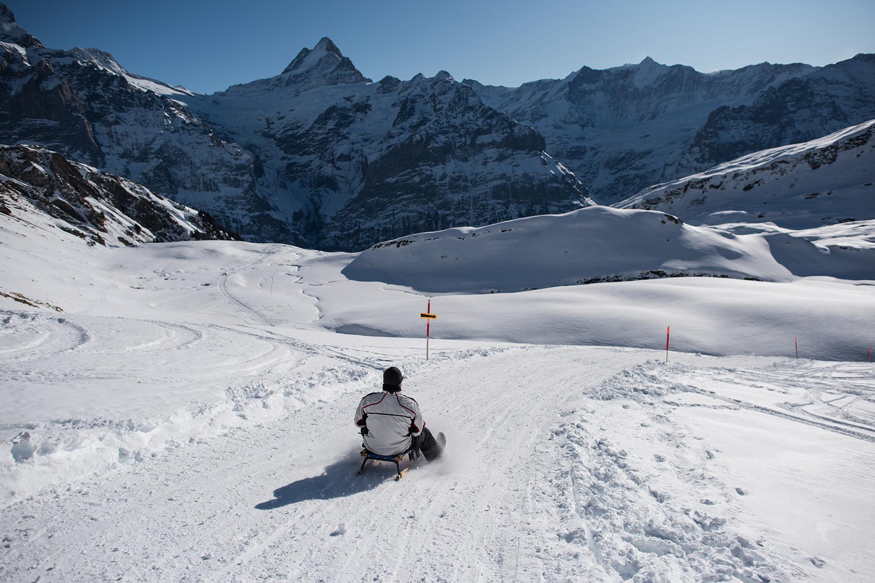 Toboggan in Grindelwald