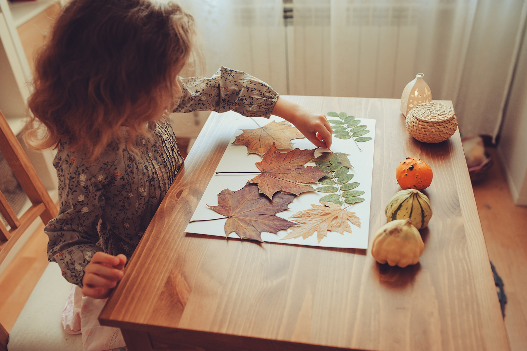 Child making a nature collage