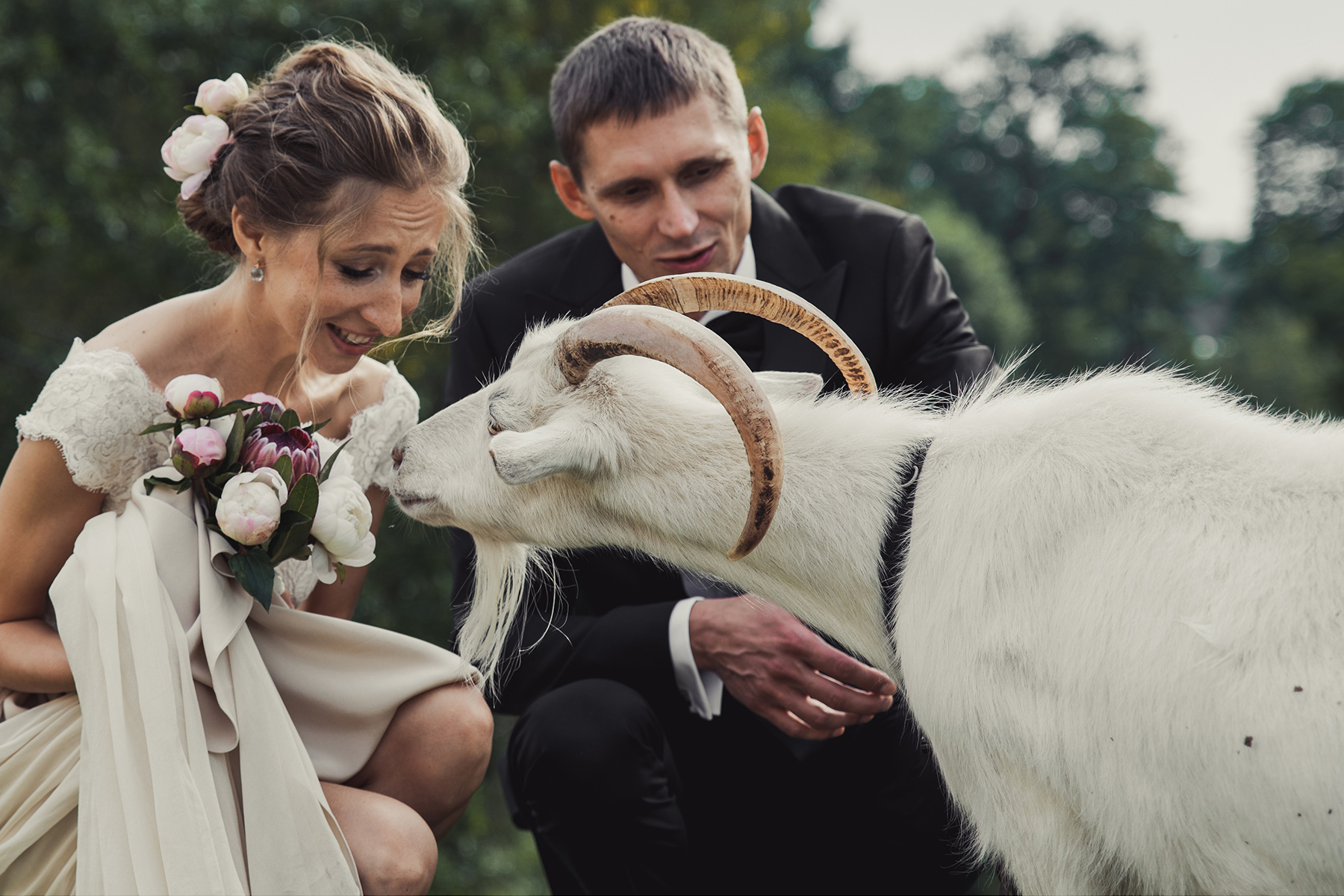 Married couple at a wedding with a goat