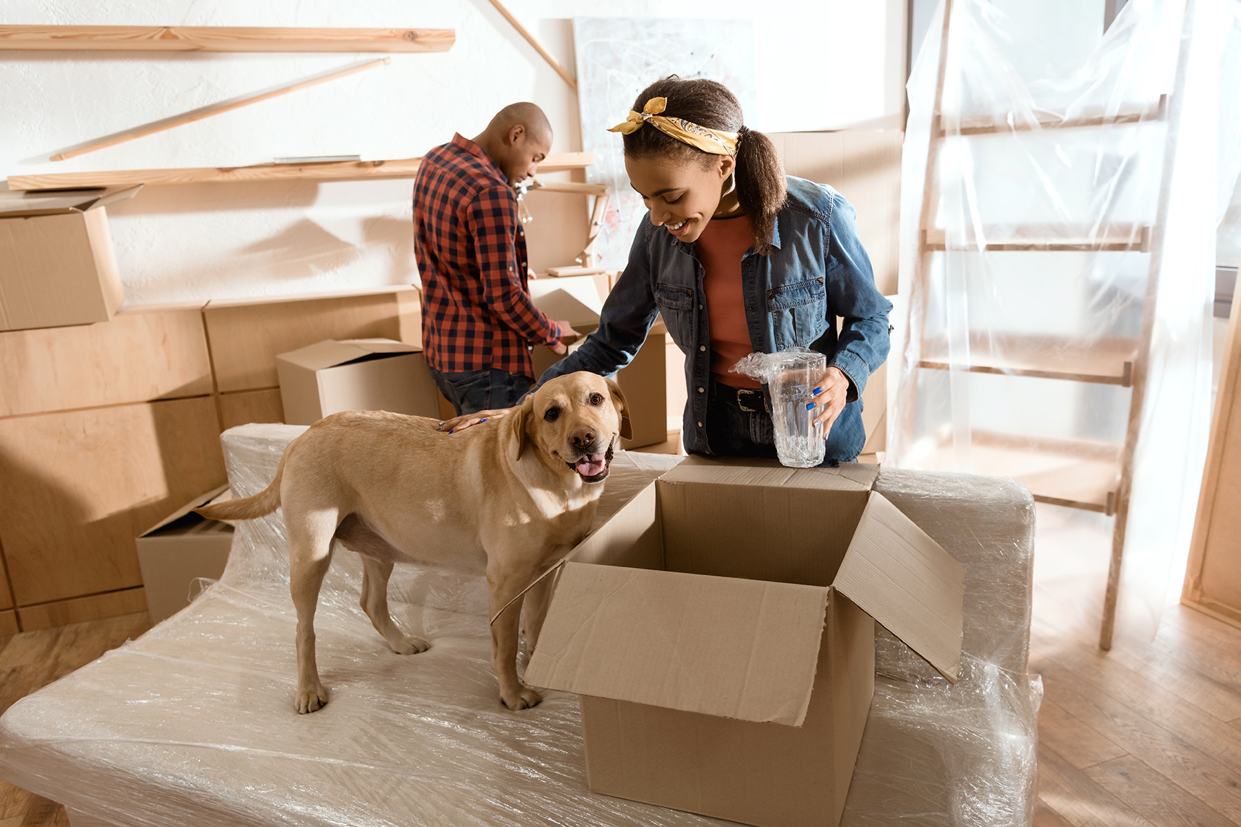 Moving out checklist: pets