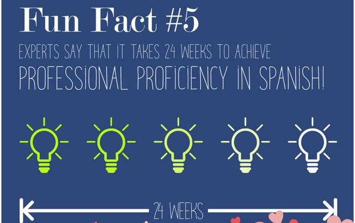 Fun fact five