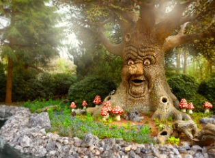 the deeply-rooted Fairytale Tree