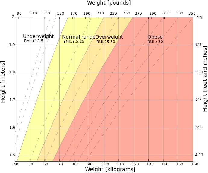 Belgian inventions: BMI