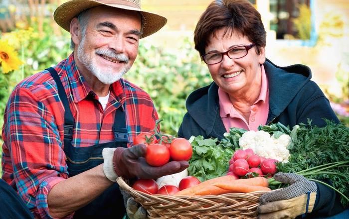 German pension – pension age
