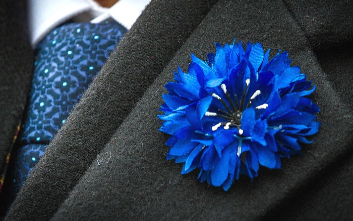 Bleuet de France is worn on the French holiday of Armistice Day in memory of veterans and war victims, similar to the remembrance poppy used in Commonwealth countries.