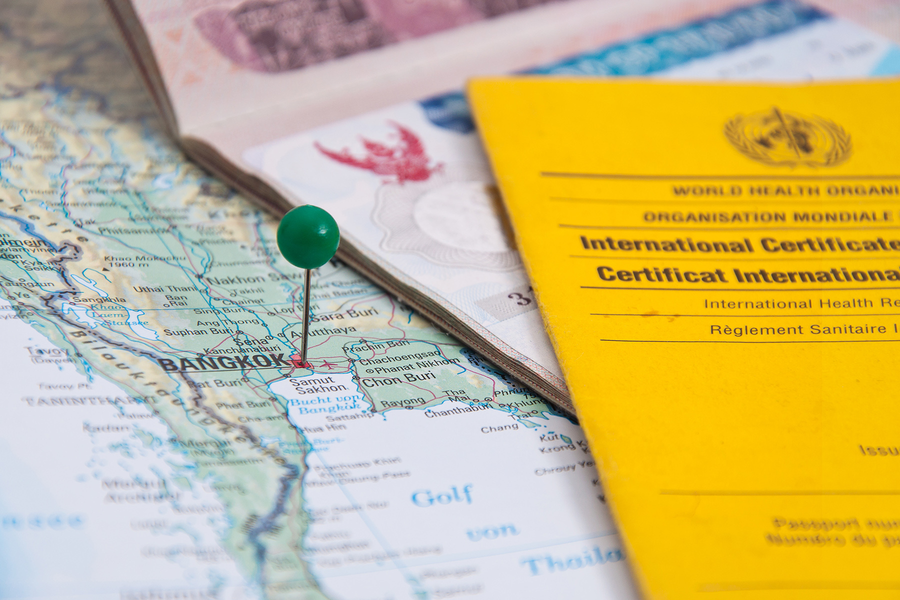 An international vaccination certificate