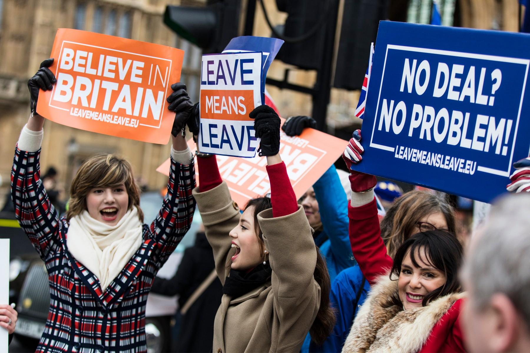 Brexit leave protesters