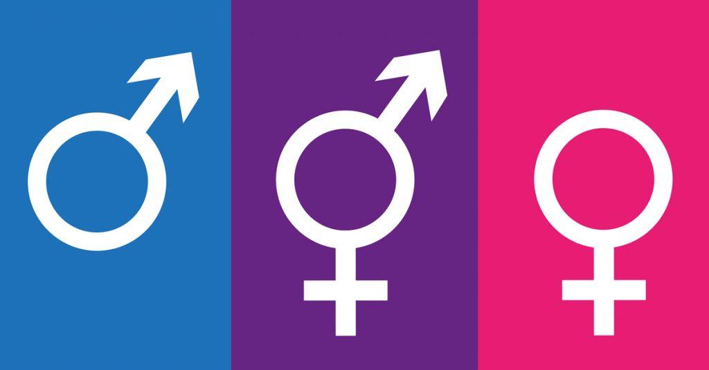 Noun genders