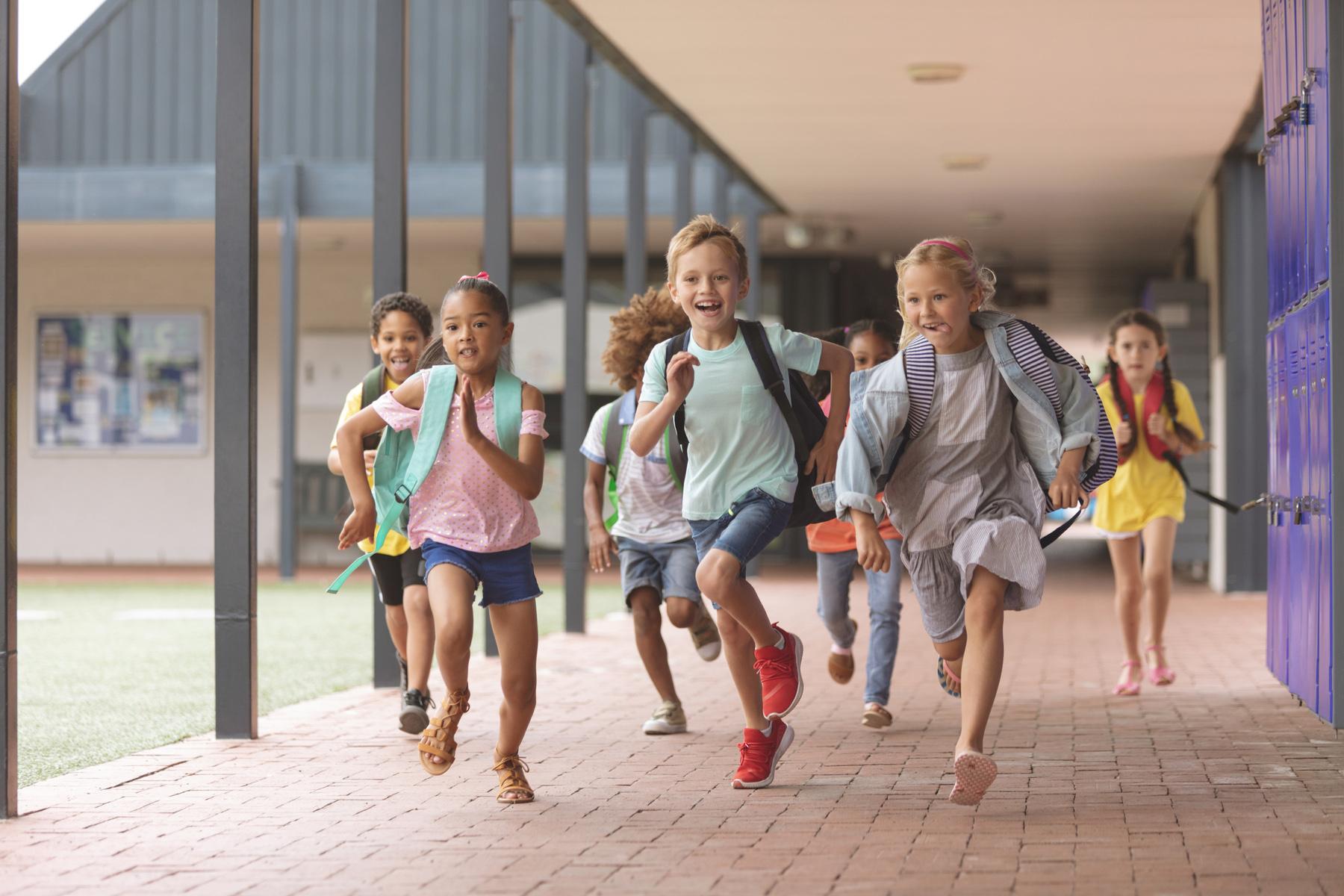 Elementary schoolchildren