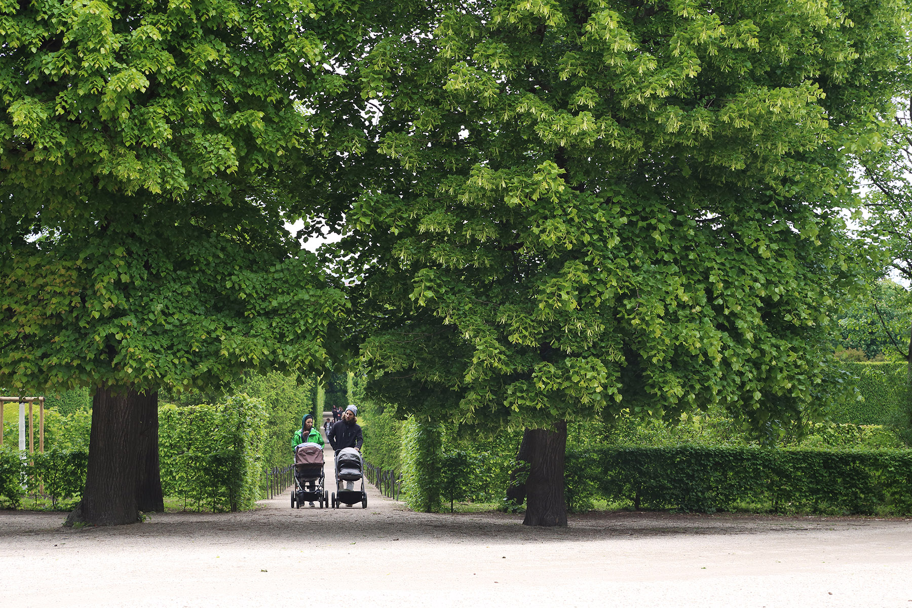 Parents with strollers in a Vienna park