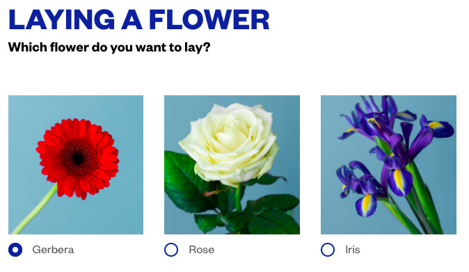 May 4 lay a flower