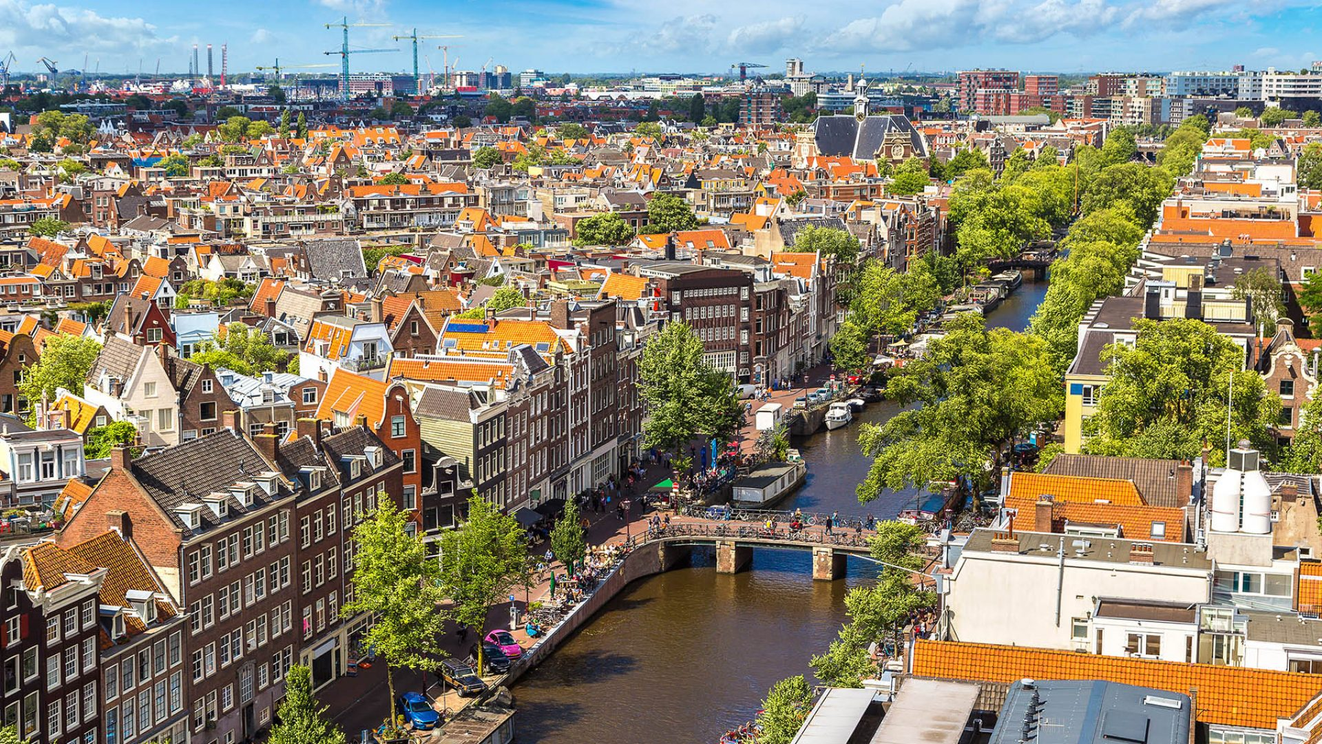Expat Netherlands