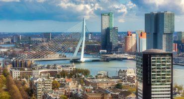 Expat parents Rotterdam