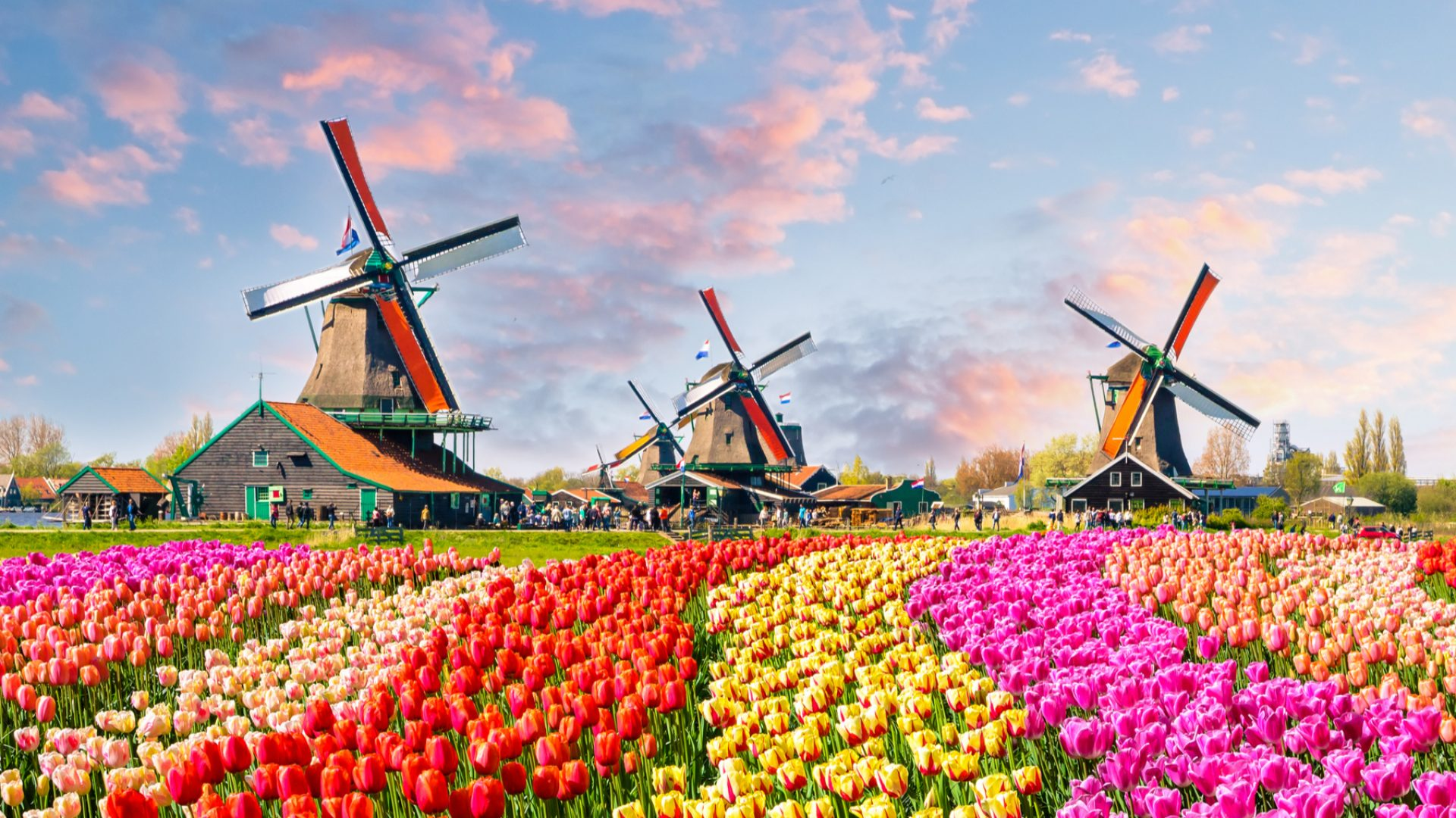 Things to do Netherlands