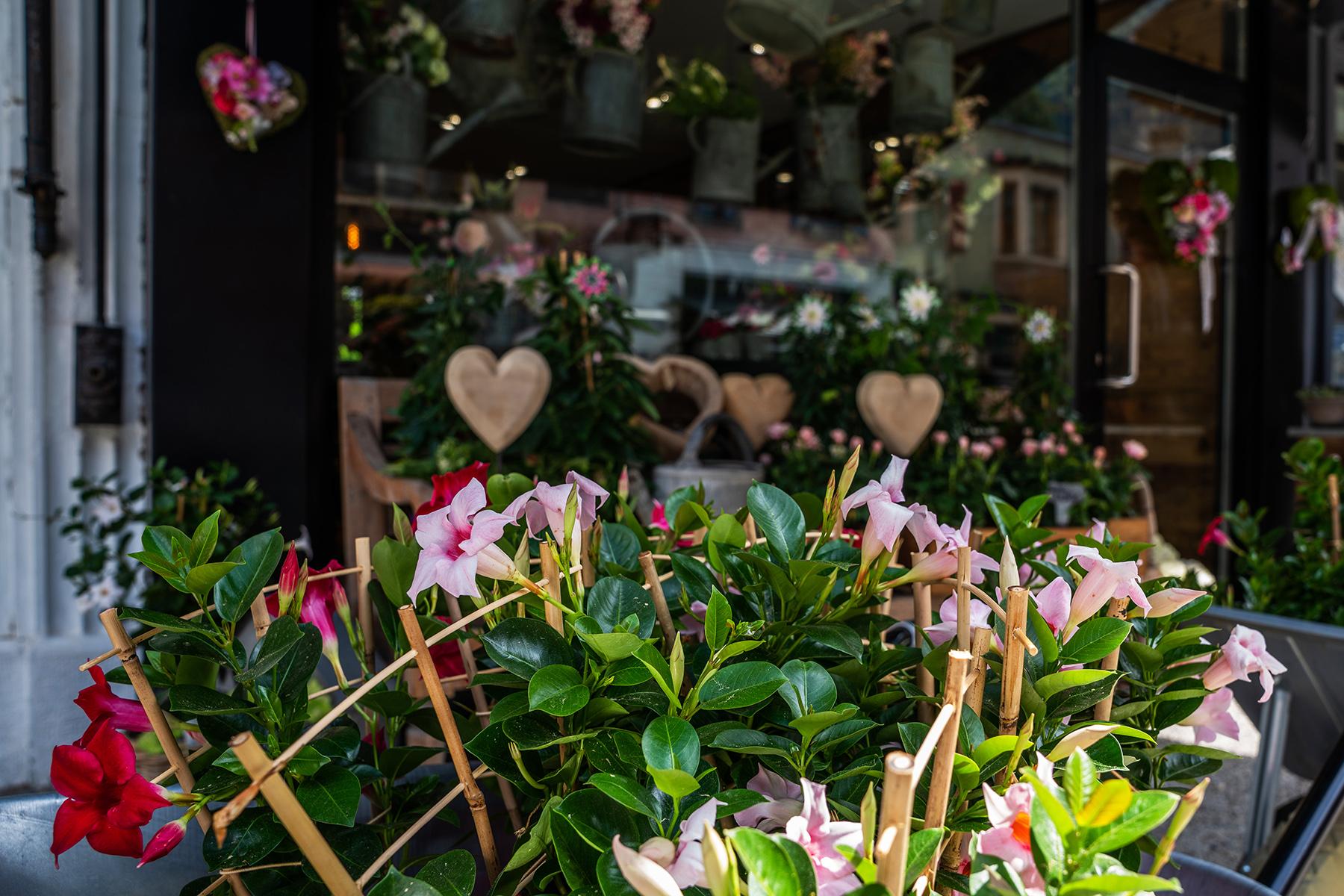 Flower shop in Amsterdam