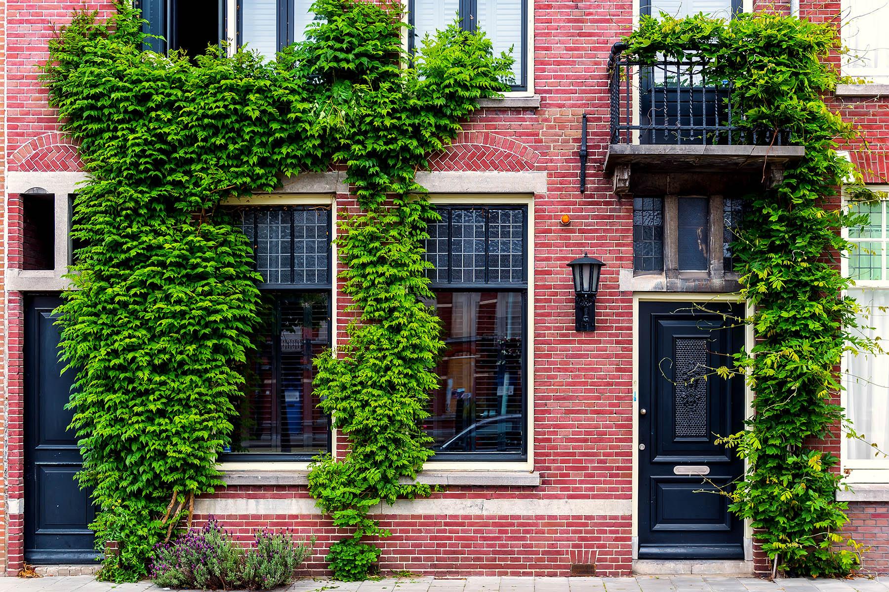Typical Dutch house façade