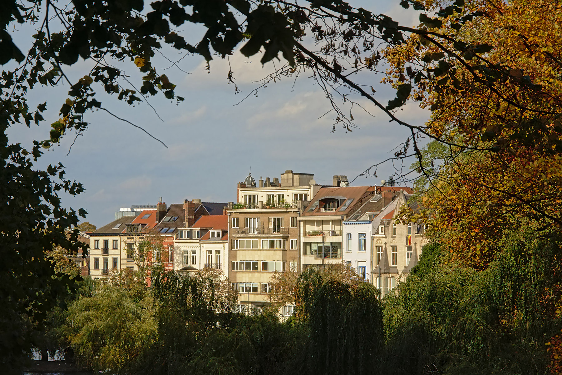 Typical houses in Ixelles