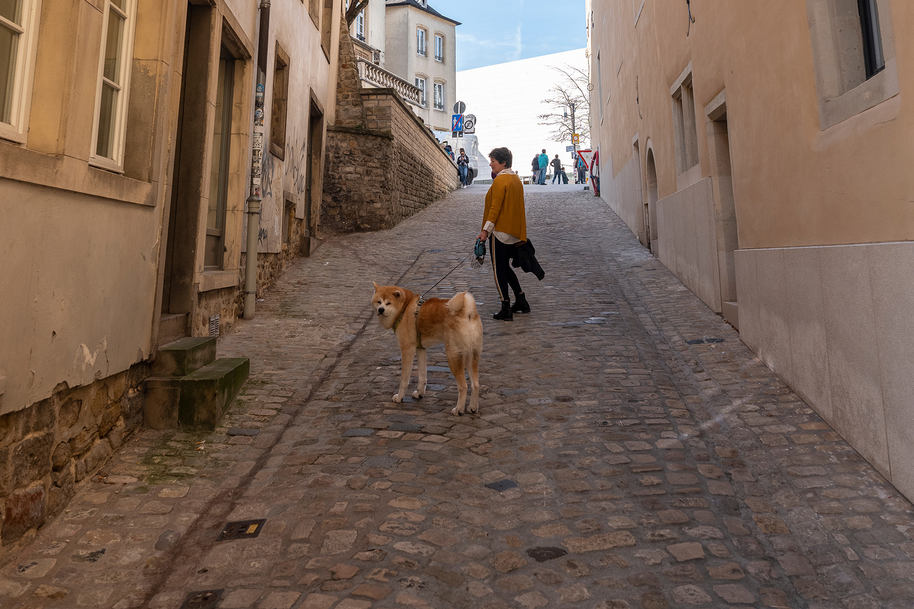 A woman walking her dog in Luxembourg City