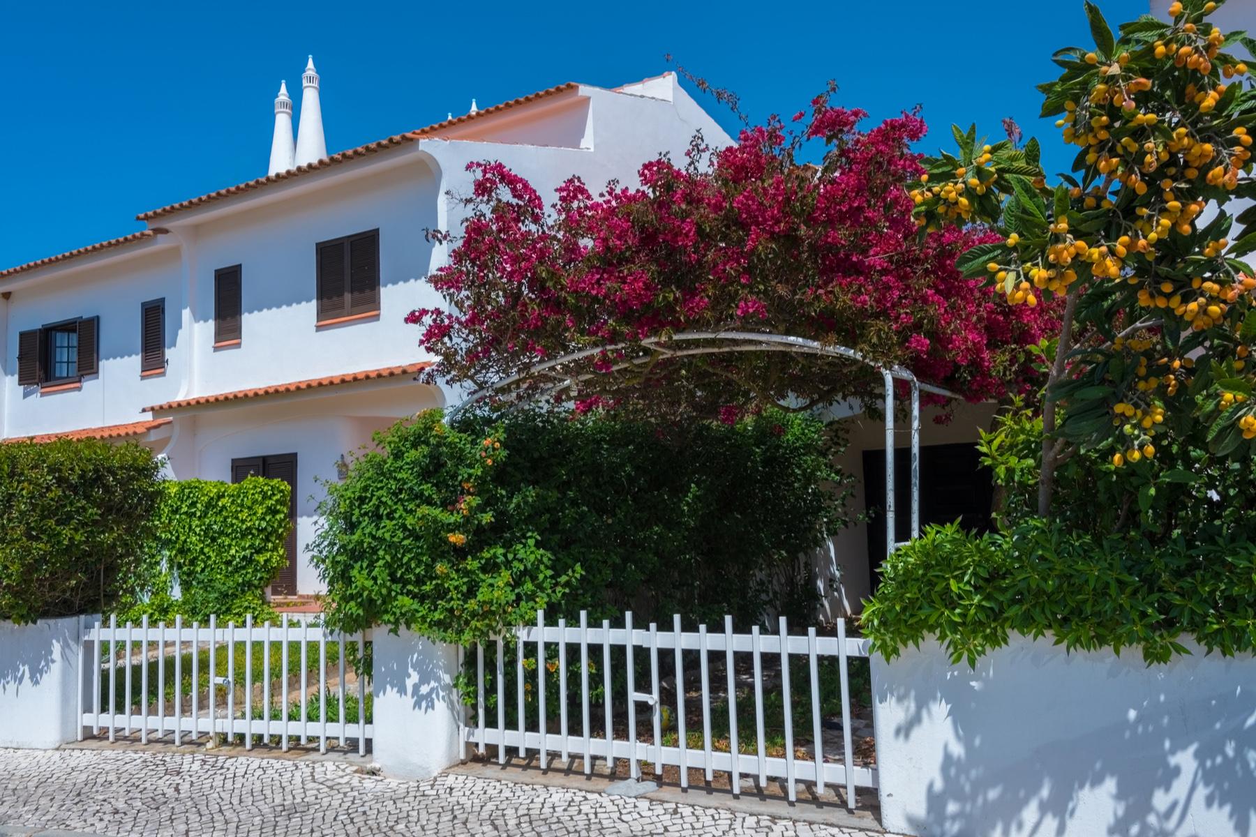 An estate in Portugal