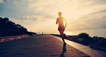 Wellness & Sports