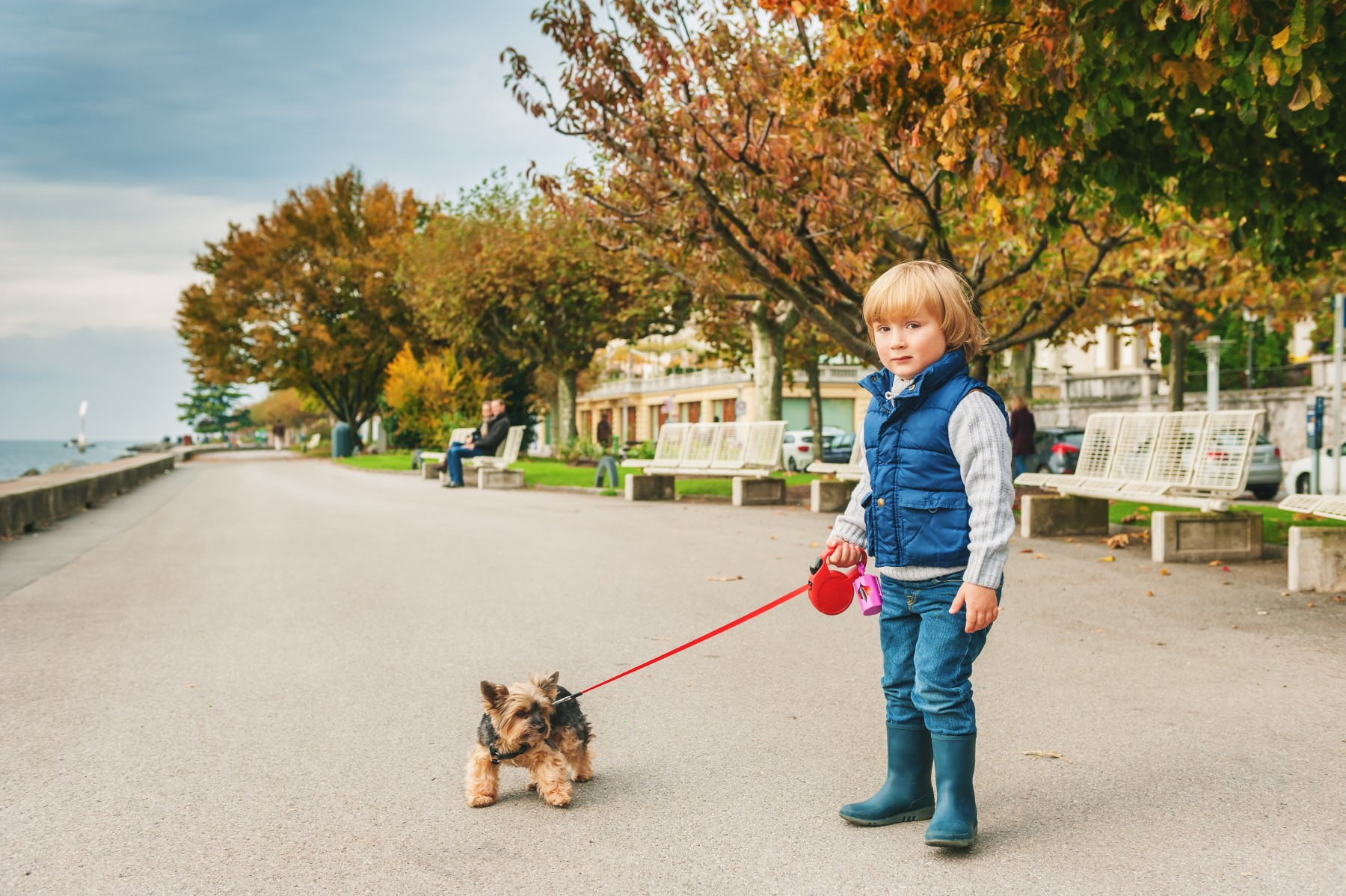 Young Swiss boy with a leashed dog