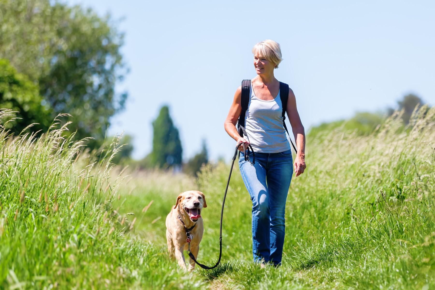 Swiss woman dog walking
