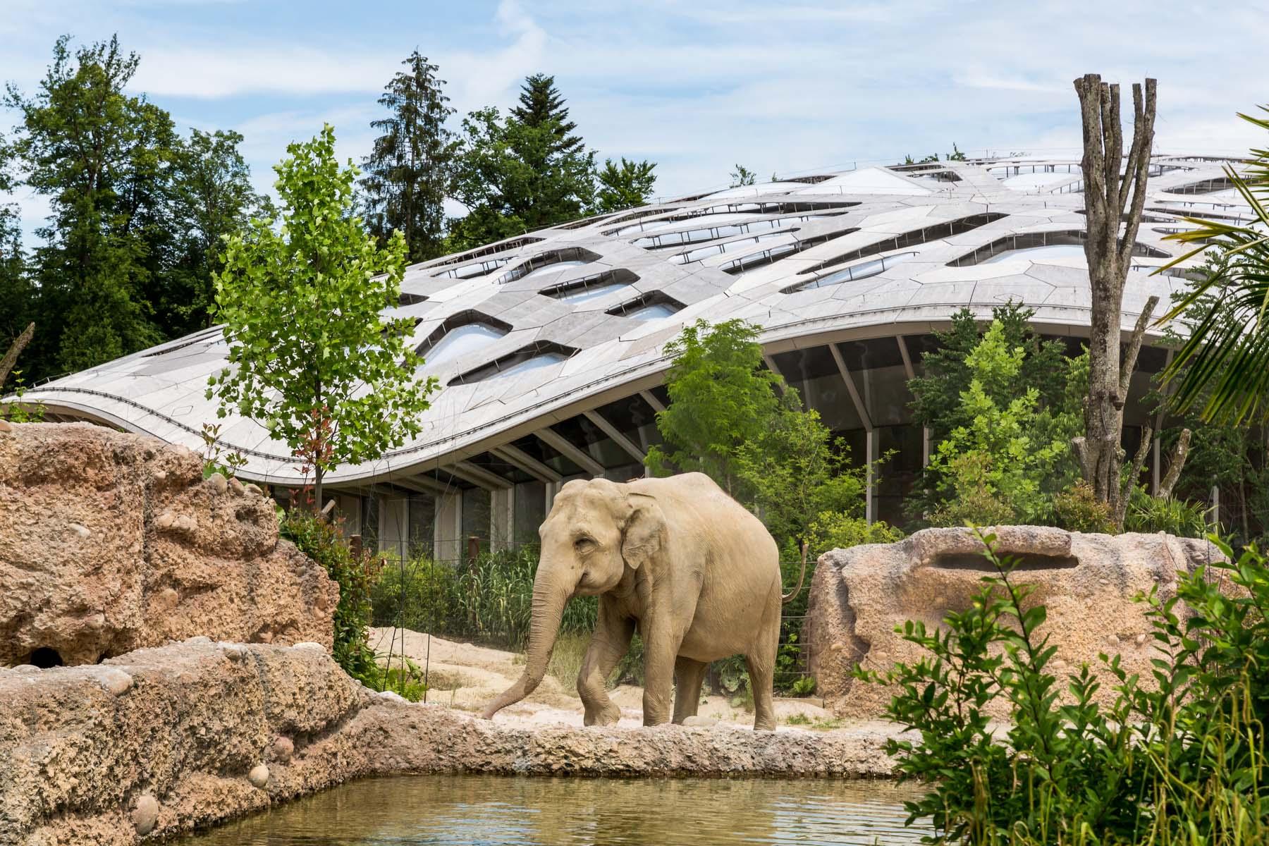 zurich zoo