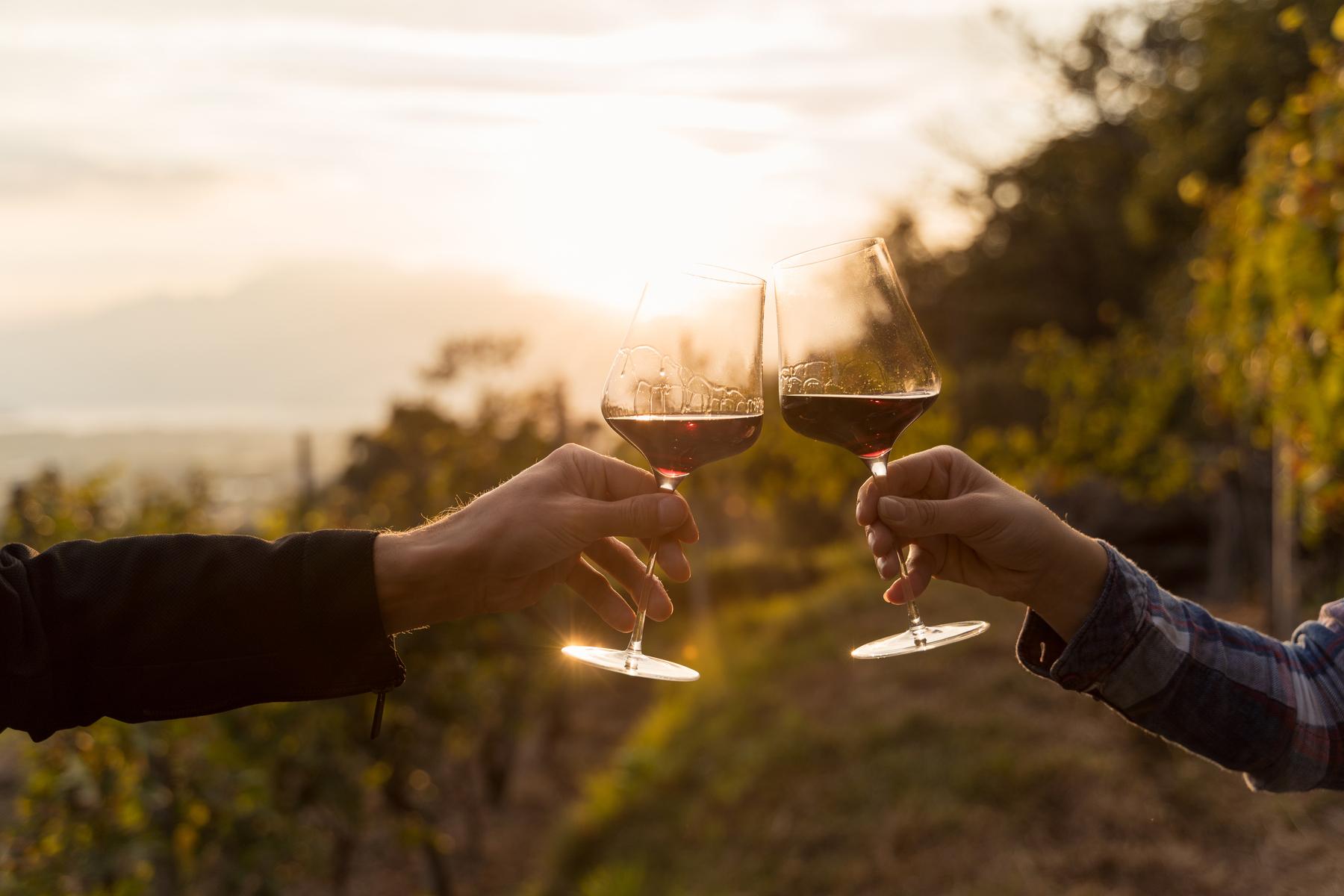 Drinking wine in Ticino
