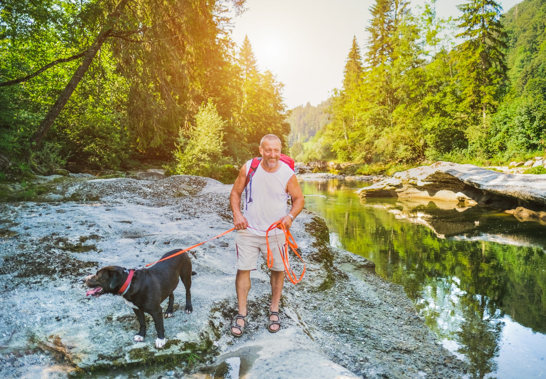 Man hiking with his dog in Switzerland