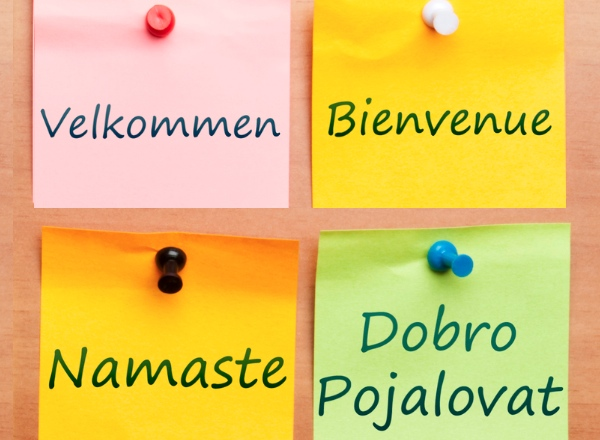 The Hausfrau: Ruminations on the German language