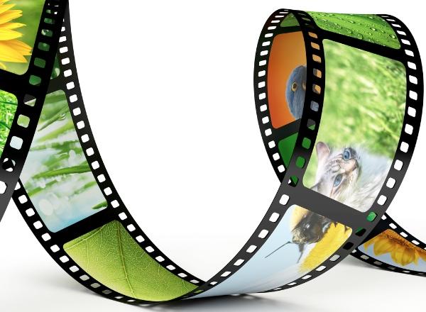 Dutch cinema: Development of Karakter