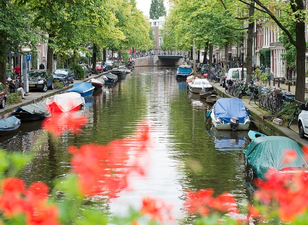 A guide to the neighbourhoods of Amsterdam