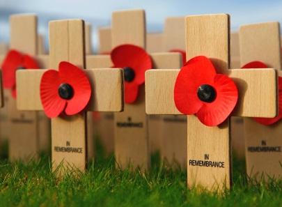 Unique memorial, ceramic poppies to mark end of devastating WWI