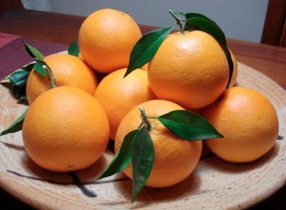 Not Hemingway's Spain: Tracing the true Valencia orange