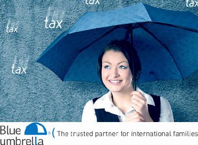 Dutch tax filing season