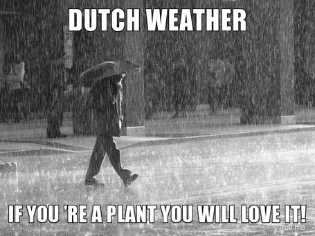 Dutch weather