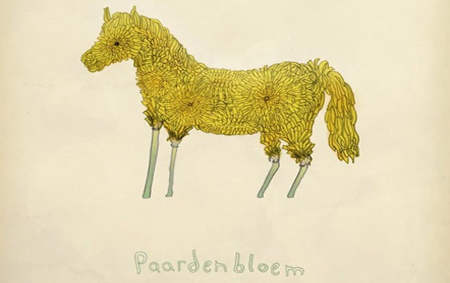 Paardenbloem by Laura Frame