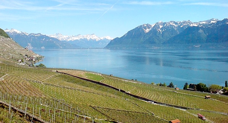 Swiss wine regions