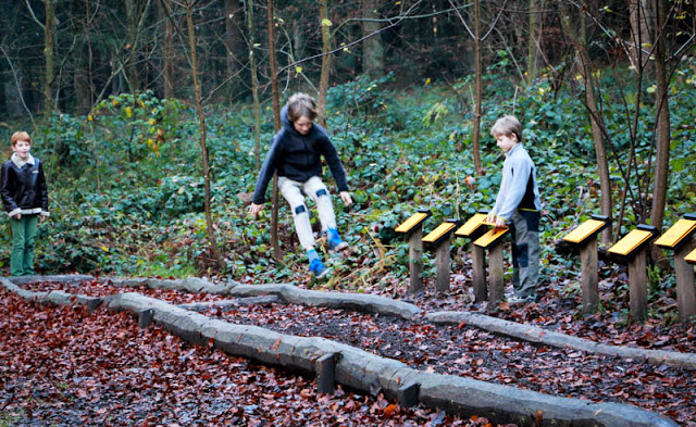 Top 10 theme trails in Switzerland for kids: Sihlwald Forest Trail