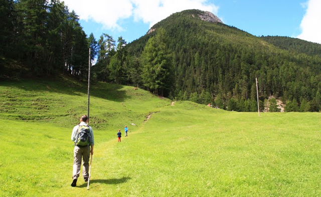 Top 10 theme trails in Switzerland for kids: Swiss National Park Bear Trail
