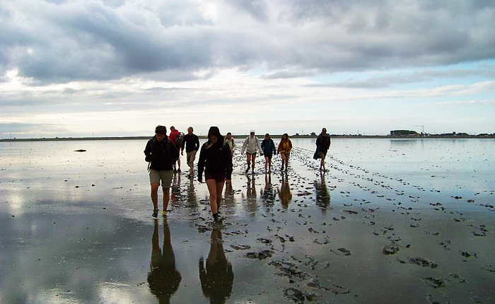 Top 10 places to visit in the Netherlands: Wadden Sea