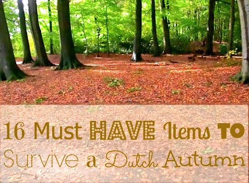 Expat life with a double buggy: 16 must-have items to survive a Dutch autumn