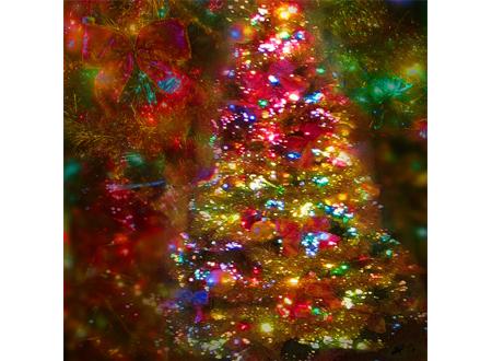 Rick Steves: History behind Christmas trees and manger scenes in Europe