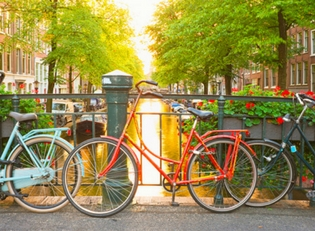 Relocation options for moving to the Netherlands