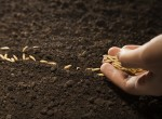 Investing for Major Financial Goals