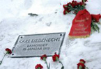 Murder mystery over Germany's 'Rosa the Red'