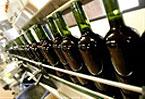 Spanish vintner reaps seeds of good ethics