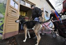 As recession bites, Germans open pet soup-kitchens
